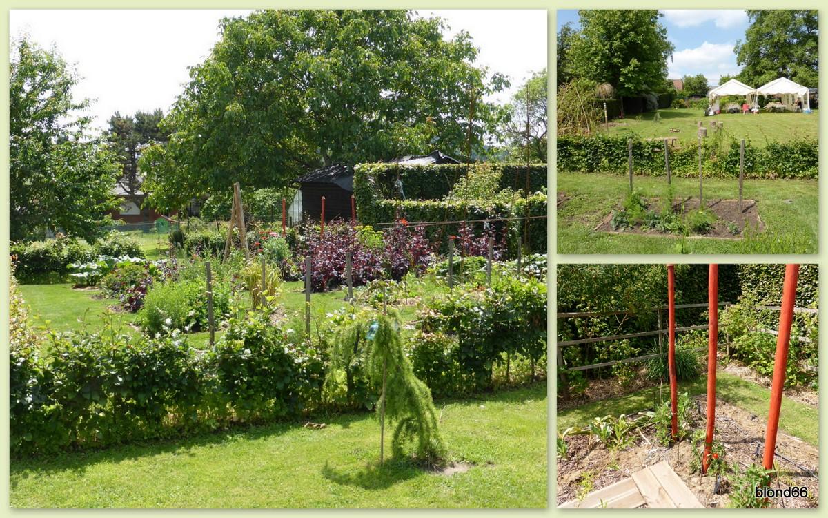 Tout pour le jardin le jardin petite suite ti blog an for Tout pour le jardin