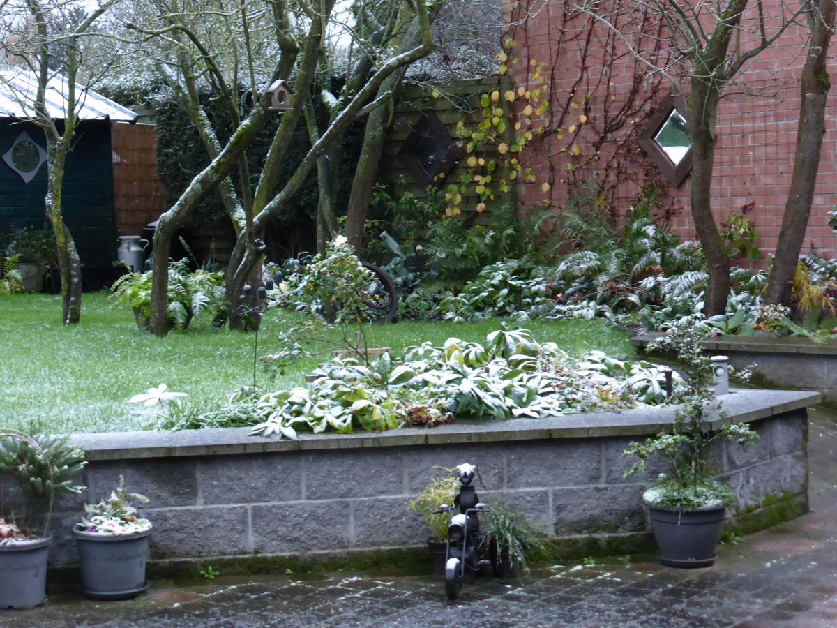 Jardin edito - Jardin novembre ...