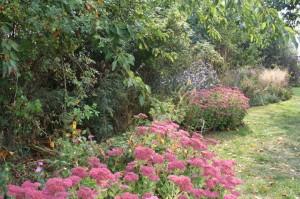 jardin des fées