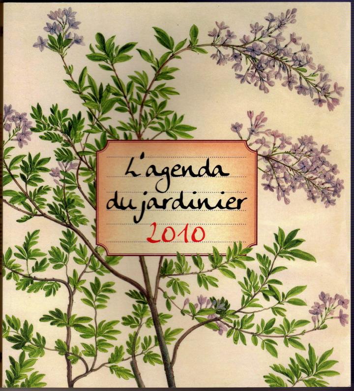 2010-agenda