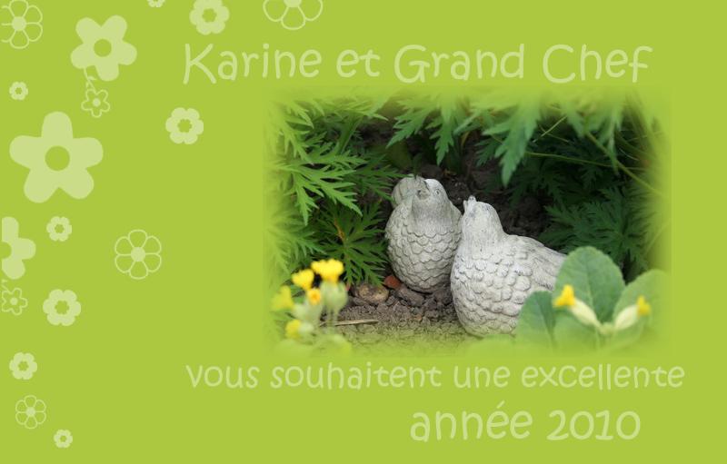 voeux-2010-blog
