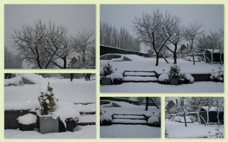 2010-12-edito