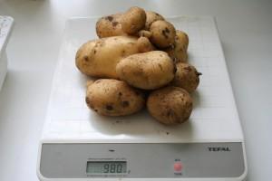 Tour à patates