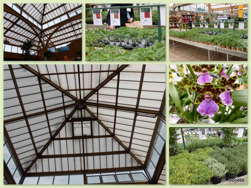 2014-botanic-03