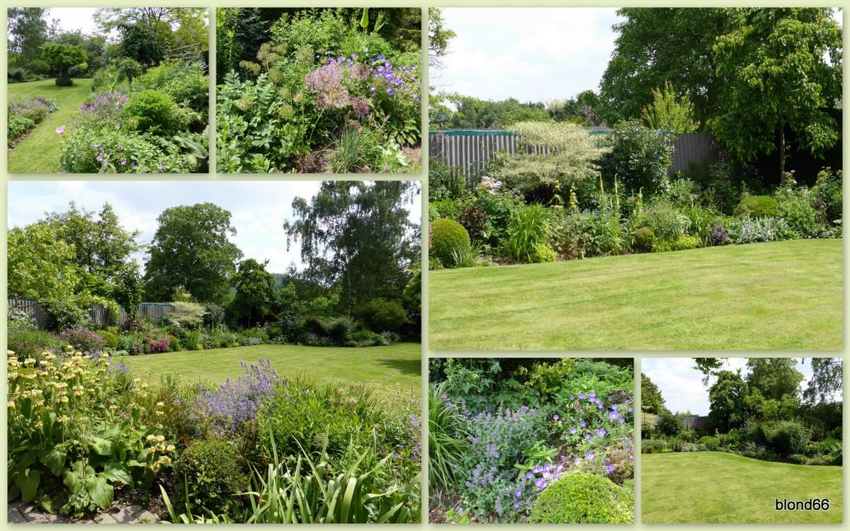 Le jardin mauve