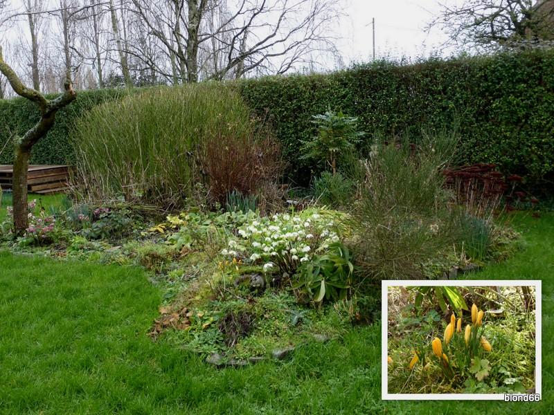 2016-jardin-fevrier