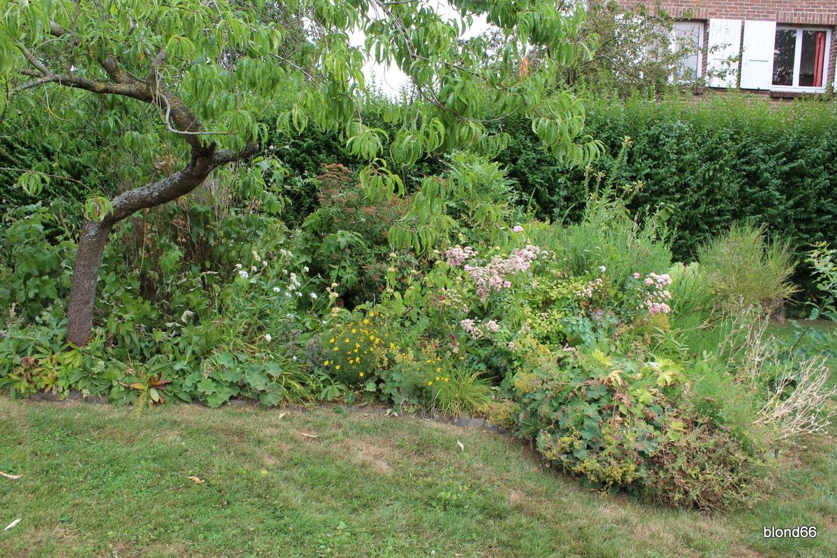 Jardin sec