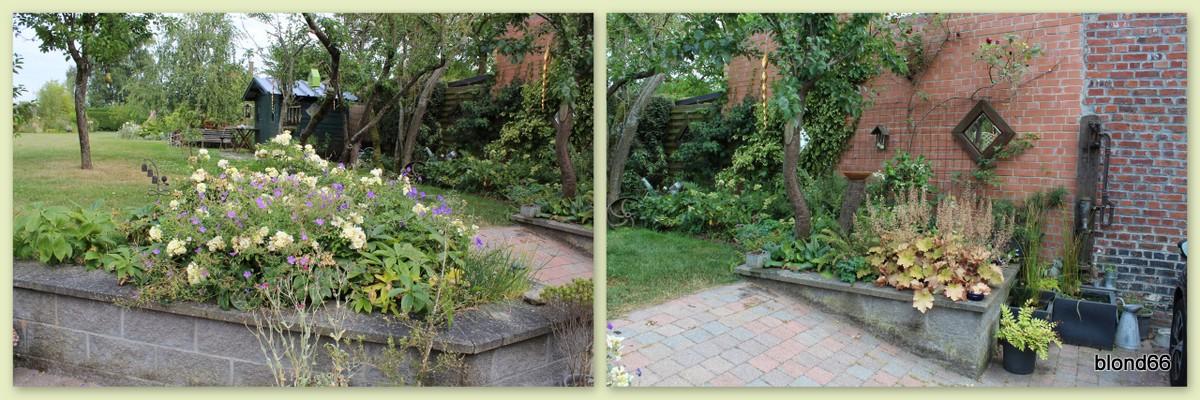 Jardin en Juillet