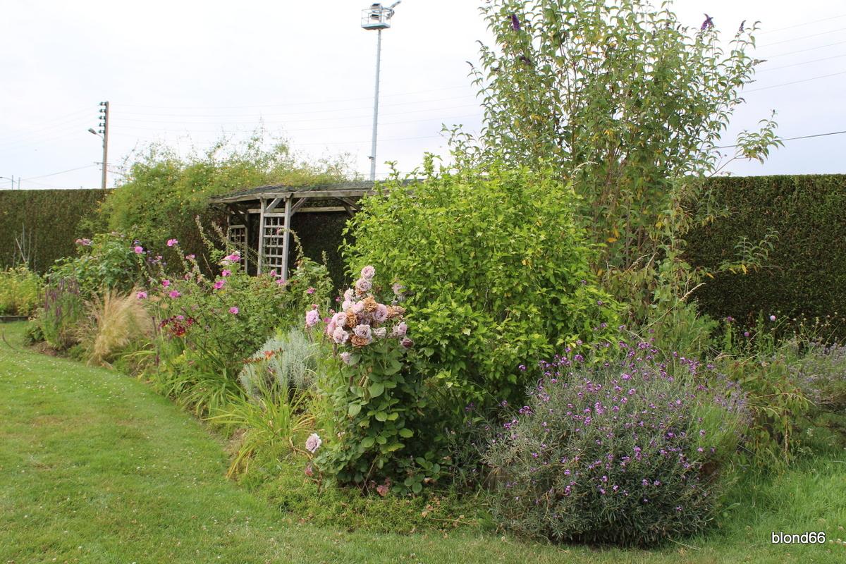 Juillet au jardin